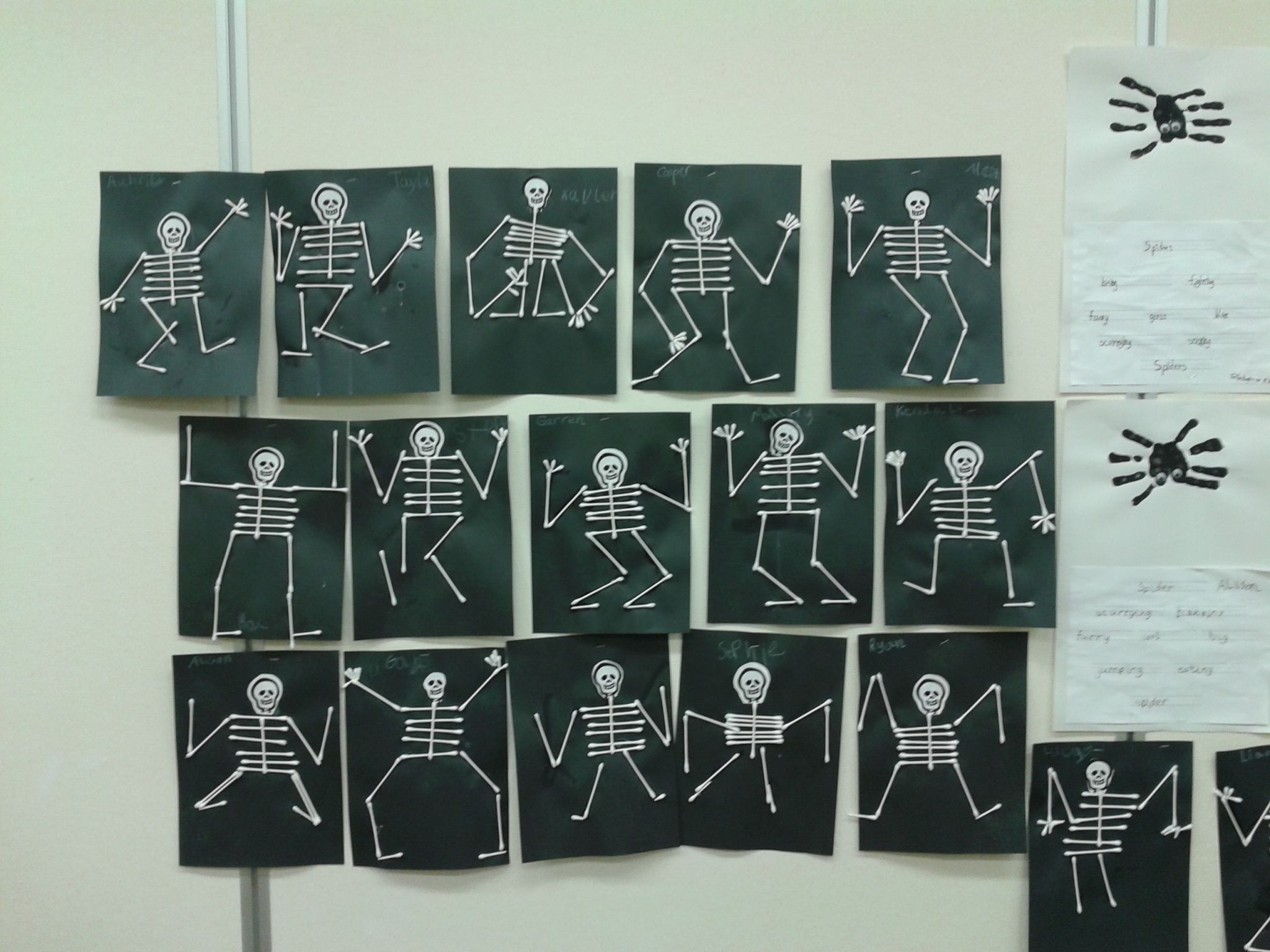 Q-tip skeletons we did in 1st grade Art/Science learning center at the