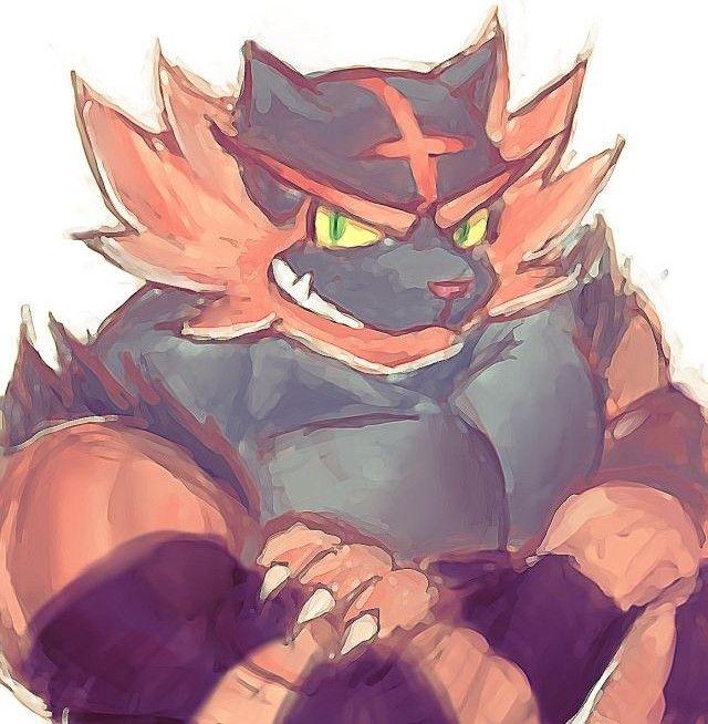 Pokemon Incineroar, Furry Art