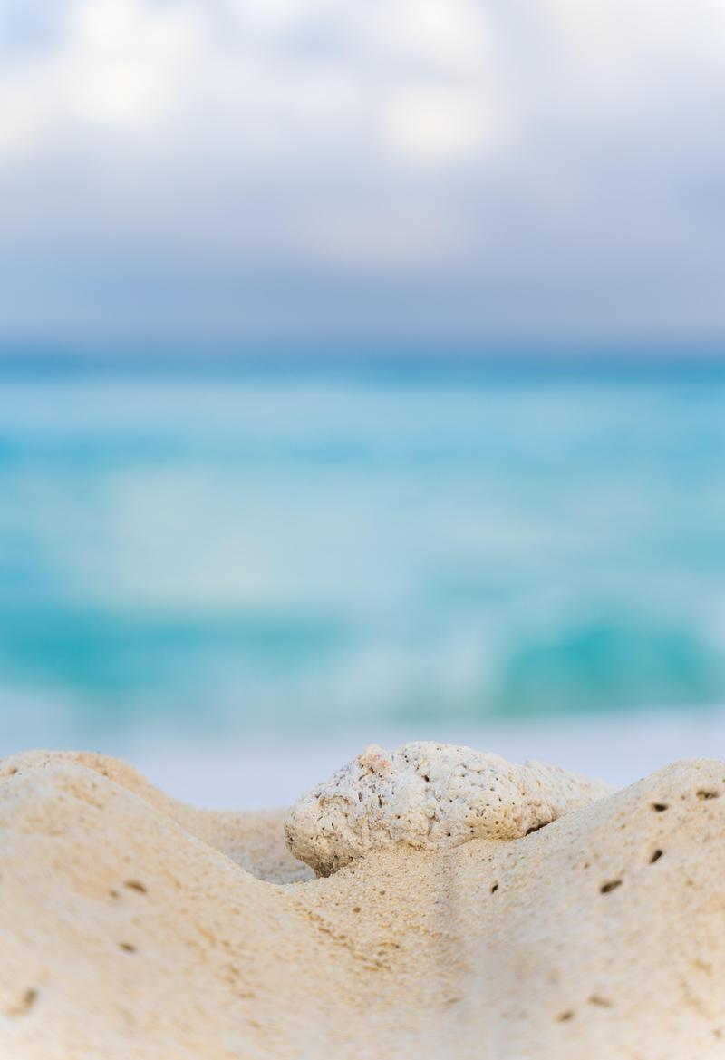 Wallpapers Day Sand Stone Beach Sea For Hd 4k Wallpapers For Desktop Mobile Phones Free Download In 2020 Wallpaper Desktop Wallpaper Mobile Phone
