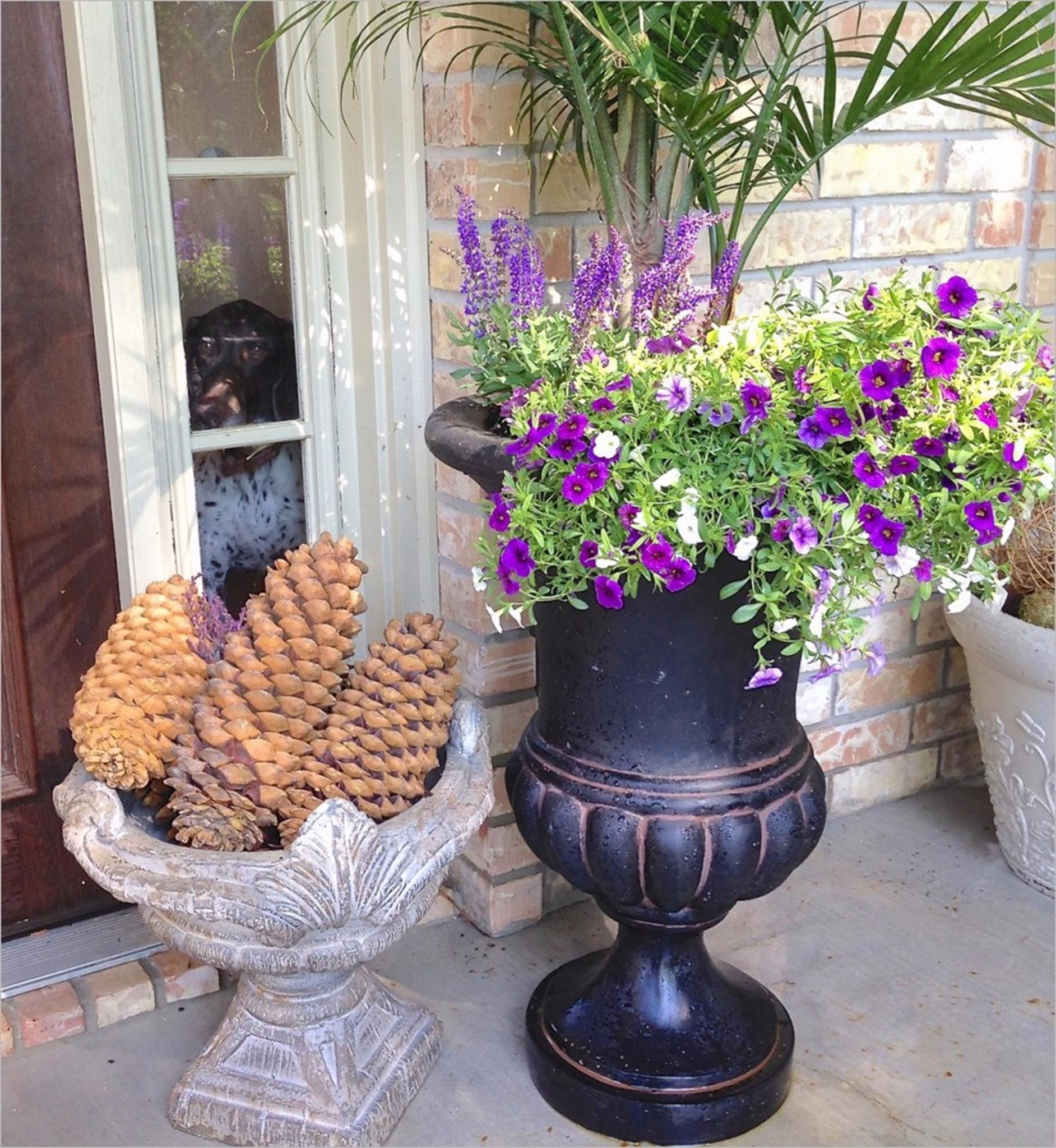 25 Most Beautiful Container Garden Combination Ideas You