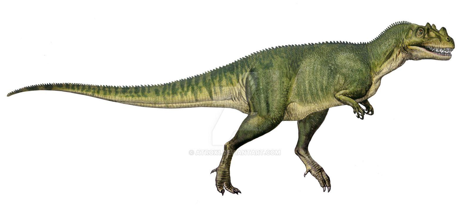 ceratosaurus nasicornis by atrox1 on deviantart dinosaurs