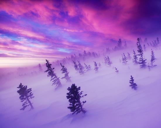 Los colores del invierno también pueden ser espectaculares