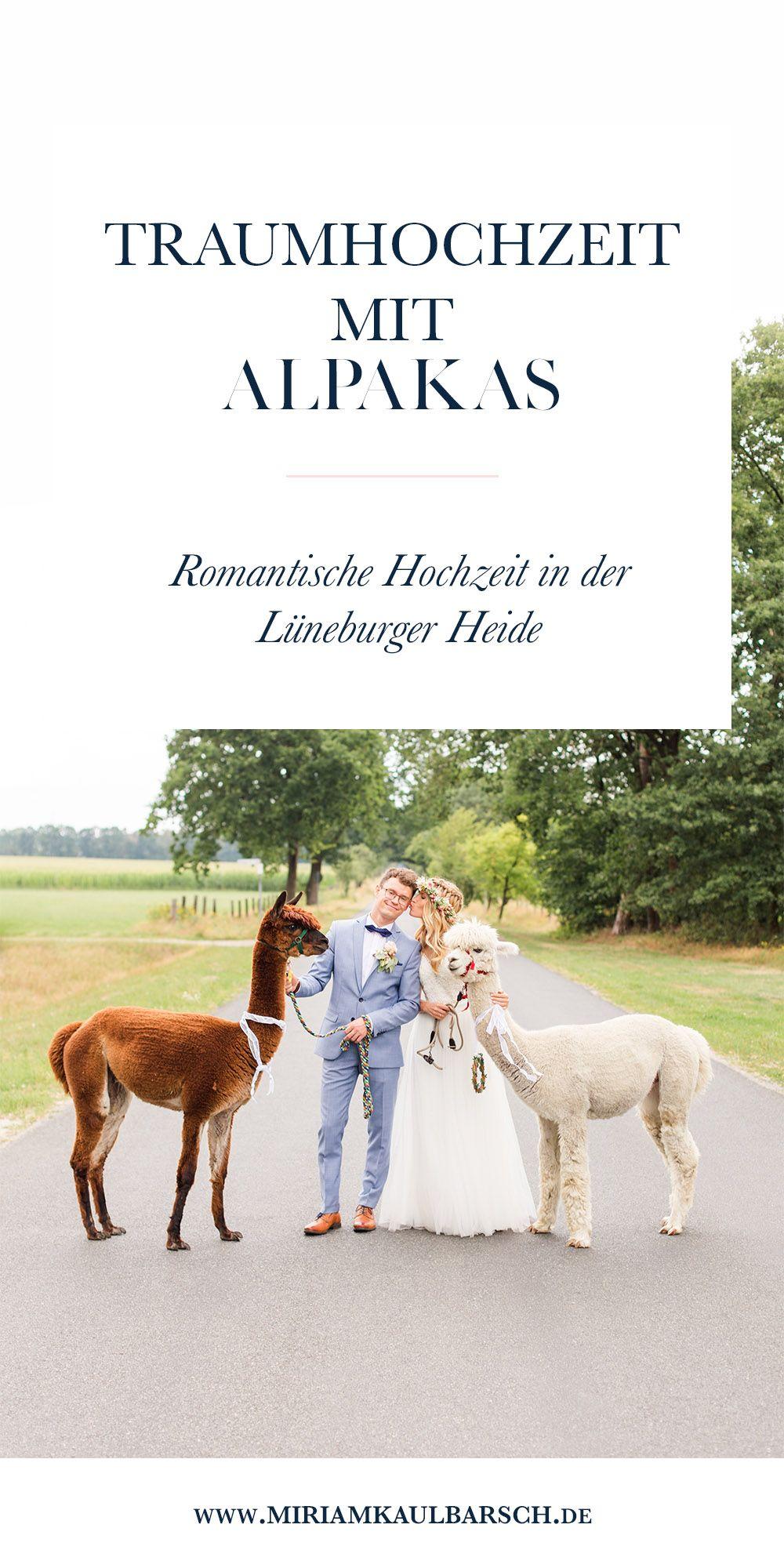 Traum Hochzeit Von Stephie Und Jan In Der Luneburger Heide Mit Alpakas Miriam Kaulbarsch Fotografie Traumhochzeit Hochzeit Luneburger Heide