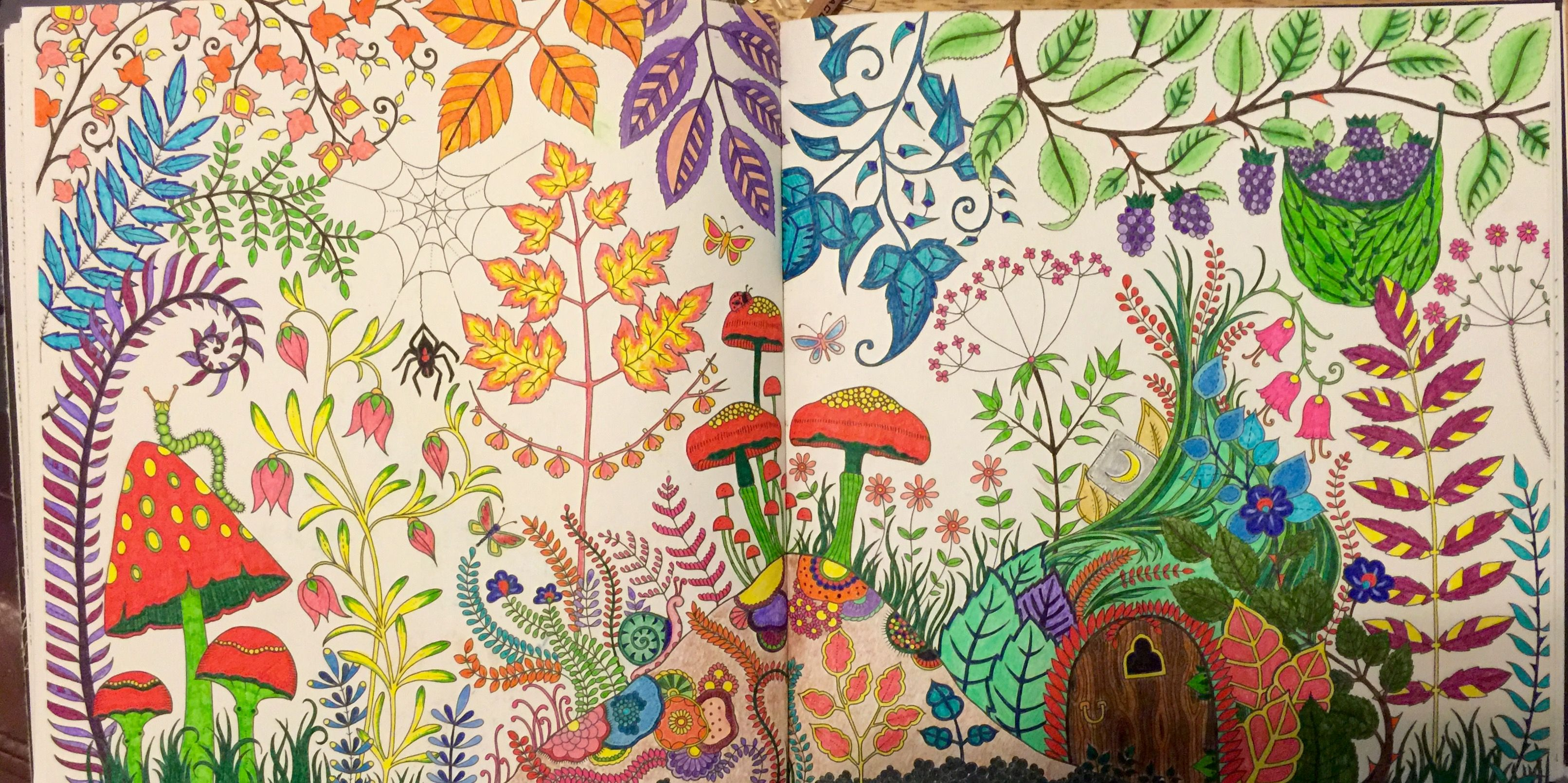 Mushrooms Grass Cabin Enchanted Forest Coloring Book