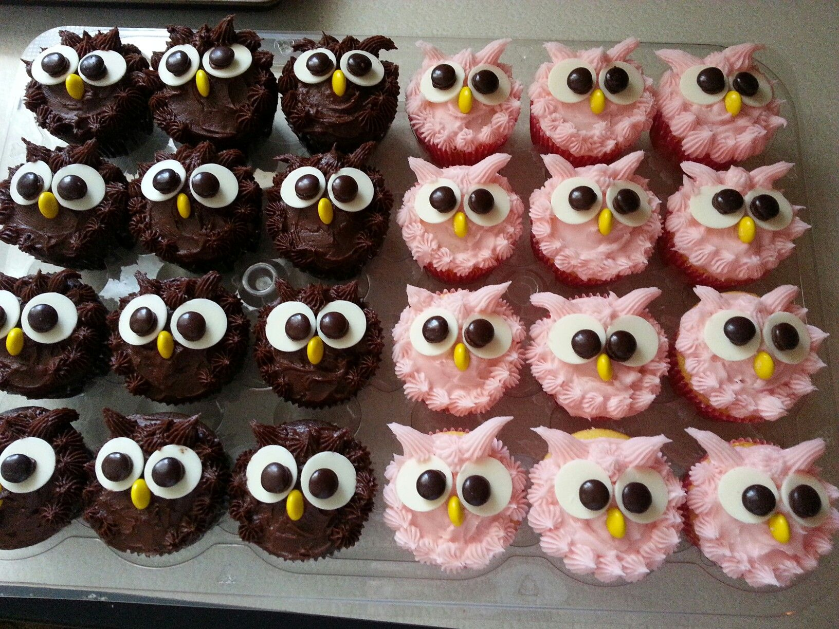 Decoration Pate A Sucre Cupcake Owl Cupcakes Cake Yammy Ec Pinterest Gateau