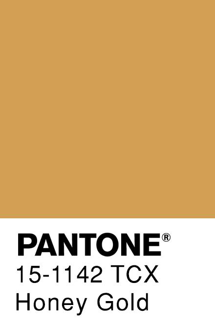 Honey Gold Pantone Gold Pantone Color Yellow Pantone Vintage Colour Palette