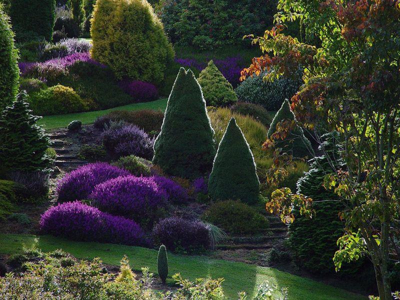 maple_glen_autumn_original.jpg (800×600)