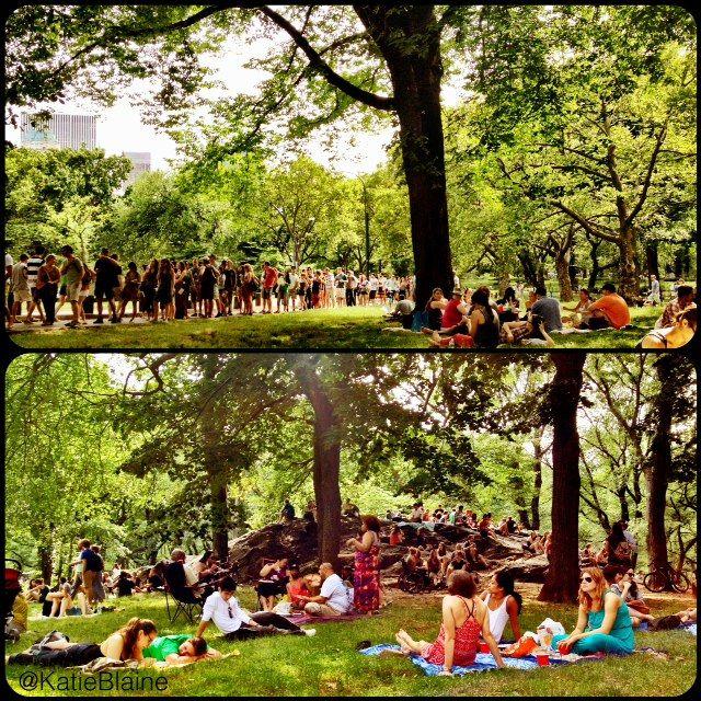 Central Park Summerstage City Parks Foundation New York City Picnic Park Park City City