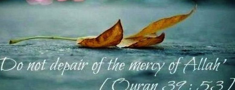 Allah is merciful. If you look into how many times Allah shows his mercy, you will see how many times his mercy encompasses everything!