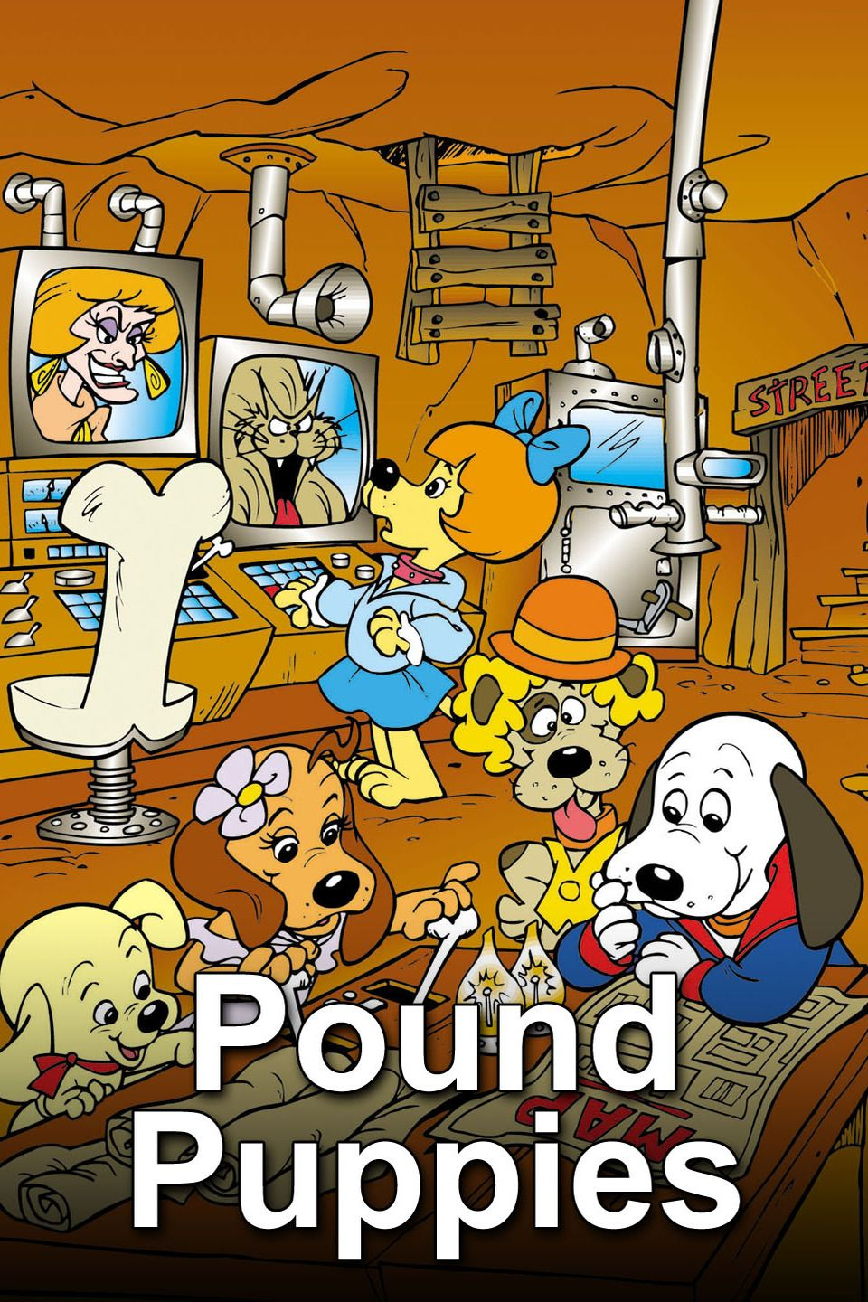 Pound Puppies 1986 1988 We Ll Find A Pup For You Pound Puppies Cartoon Pound Puppies Cartoons 1980s