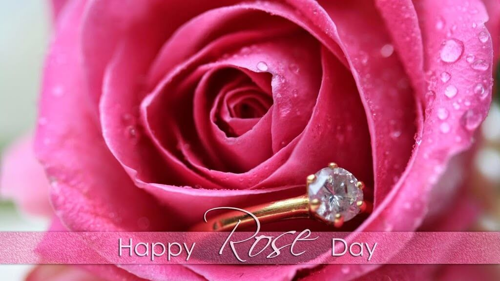 Rose Day Is On The First Day Of Valentine Week I E On February 7 On Every Year On This Special Ro Happy Rose Day Wallpaper Love Rose Images Rose Day Wallpaper