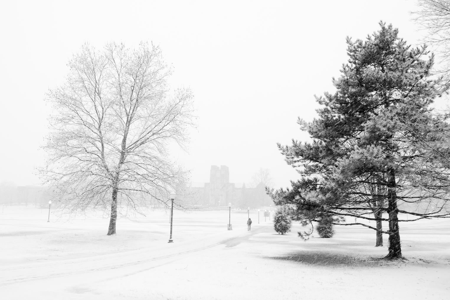 Virginia Tech Drillfield on the first snow of the season