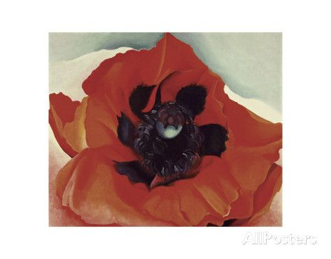 Poppy, c.1927 Posters by Georgia O'Keeffe at AllPosters.com