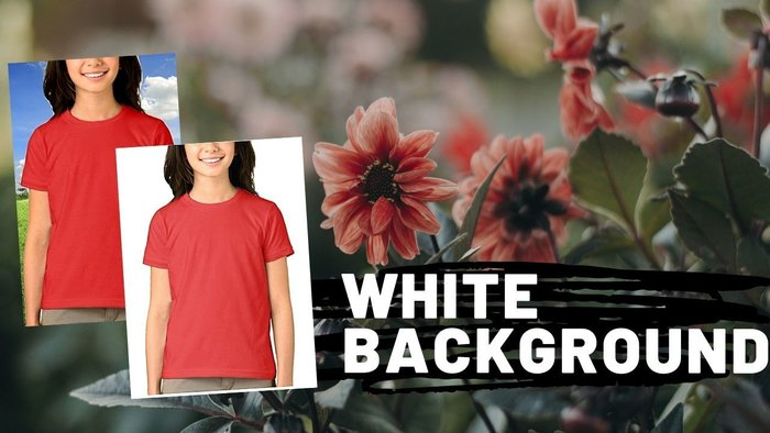 Change The Background Color Of A Picture To White Online
