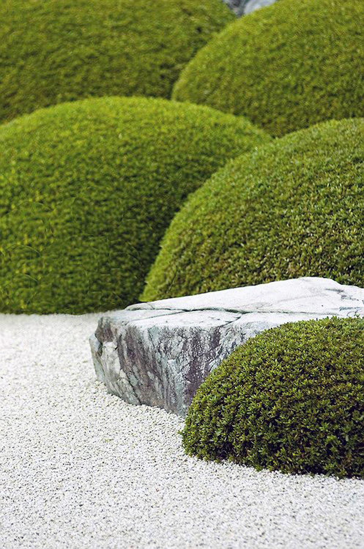 Giardini zen da esterno - Giardini zen da esterno ...