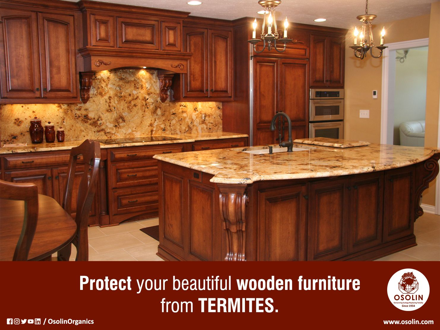 The Safety Of Your Furniture Is In Your Hand Use Termitac 100 Herbal Anti Termite Solution Elegant Kitchens Beautiful Kitchens Rustic Kitchen Cabinets