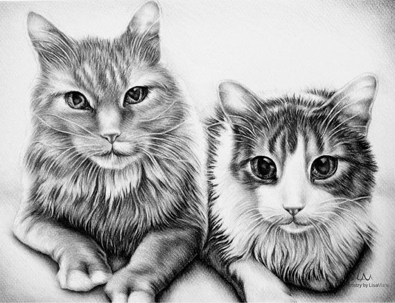 Custom pet drawing in Black and White with by ArtistrybyLisaMarie