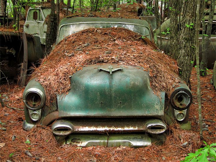 Wild And Bad With Images Old Classic Cars Abandoned Cars