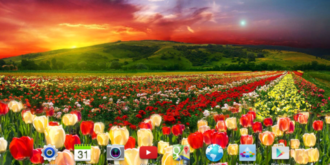 Hd Nature Live Wallpaper For Pc Really Funny Pictures And Wallpapers Topjengofun Com Live Wallpaper For Pc Live Wallpapers Wallpaper Pc