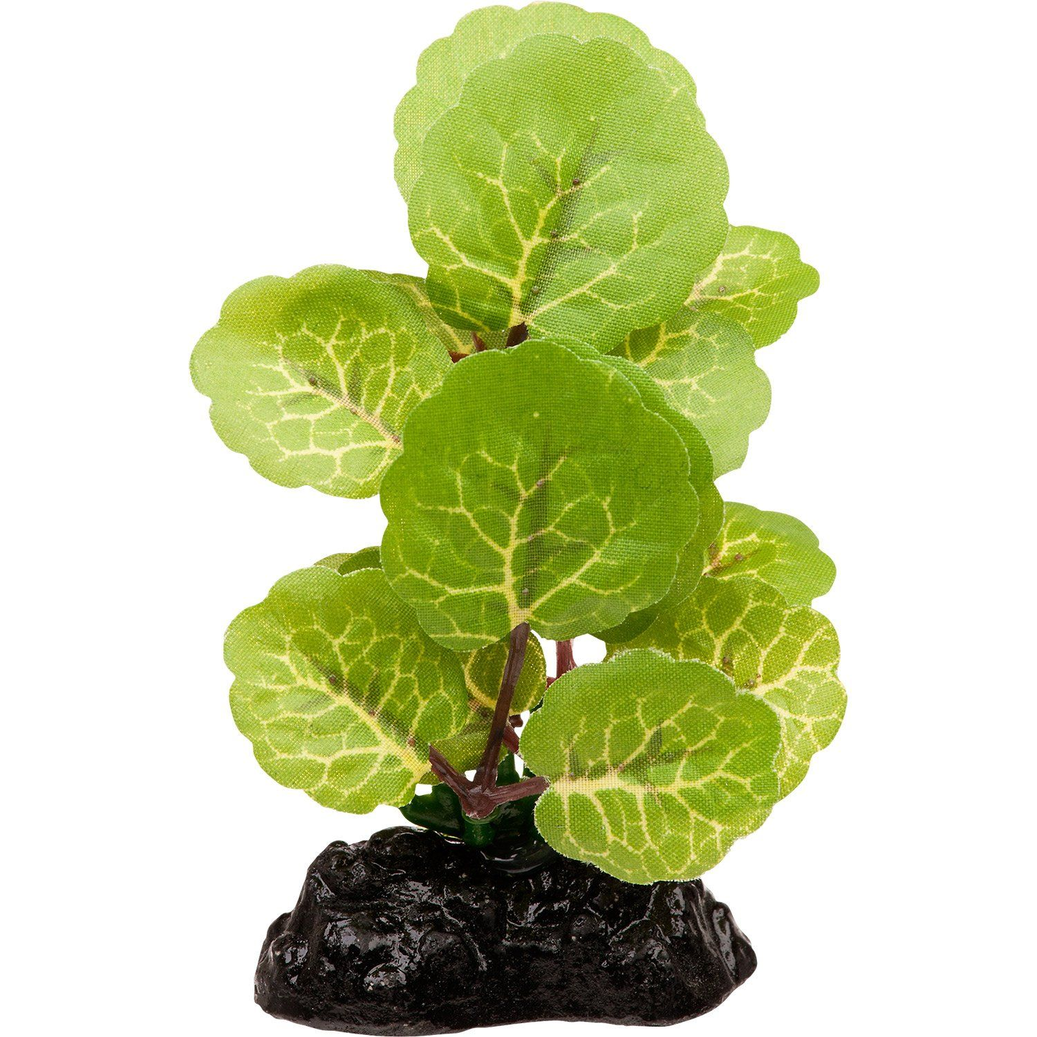 Natural looking and beautiful Realistic plants enhance aquariums