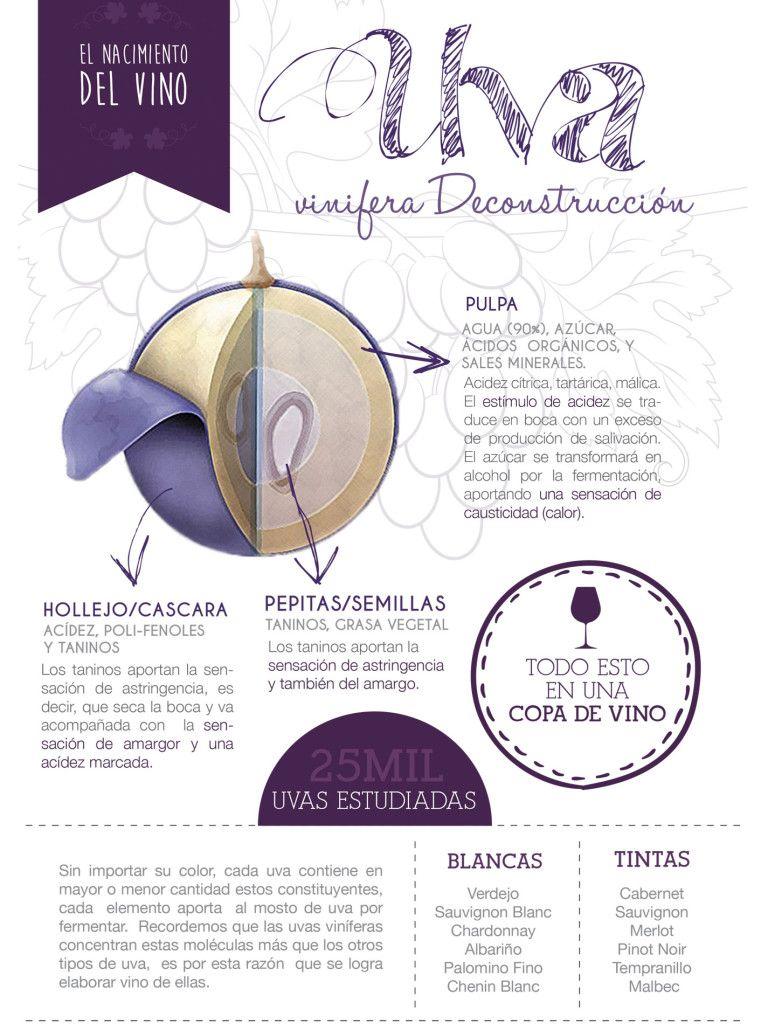 El Nacimiento Del Vino La Uva Vinos Y Quesos Vino Etiquetas De Vino