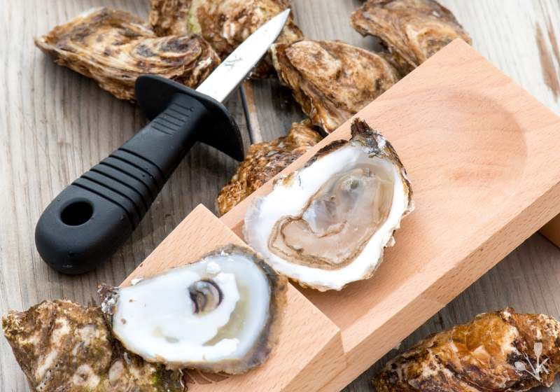 How To Shuck Oysters At Home Oyster Guide Kitchensanity Cooking Inspiration Oysters Shucking Oysters