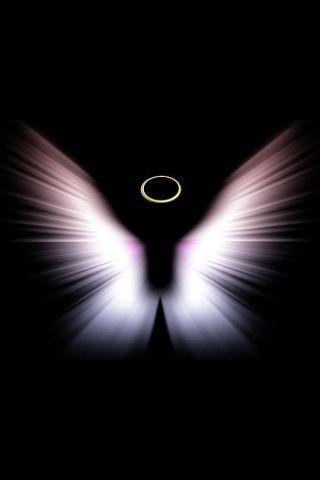 Butterflys From Heaven