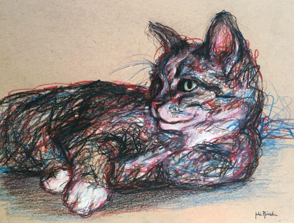 Cat sketch pet portrait pencil, pen and colored pencil