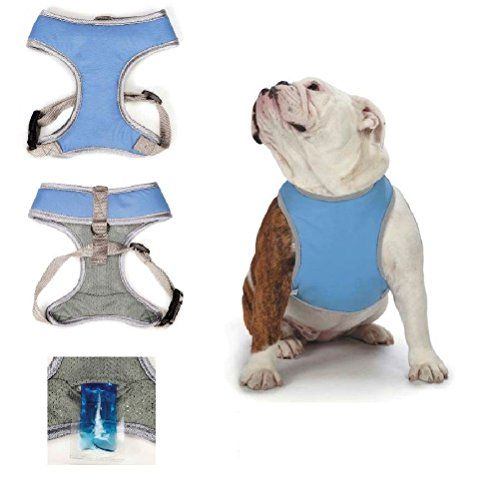 Reflective Cooling Harness Dog Vest W Ice Packs Hot Weather Click Image For More Details Note It Is Affiliate Link To Amazon Dog Harness Dog Vest Dogs