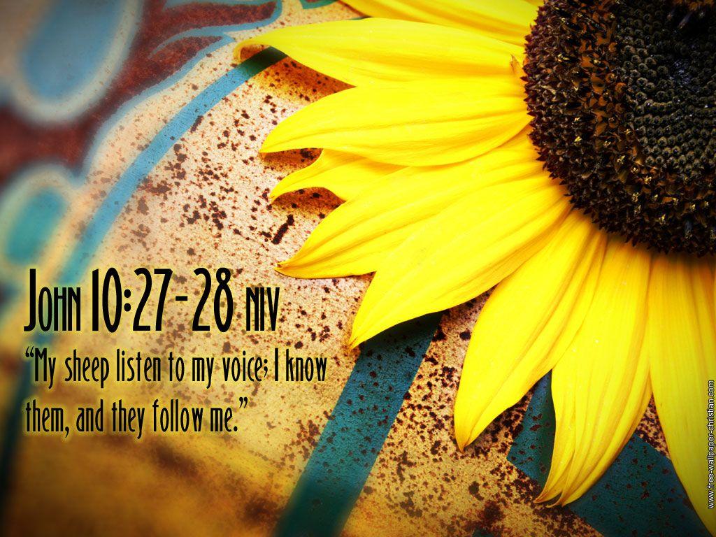 Bible Verse Galatians 5:25 | Bible Verses | Pinterest | Bible