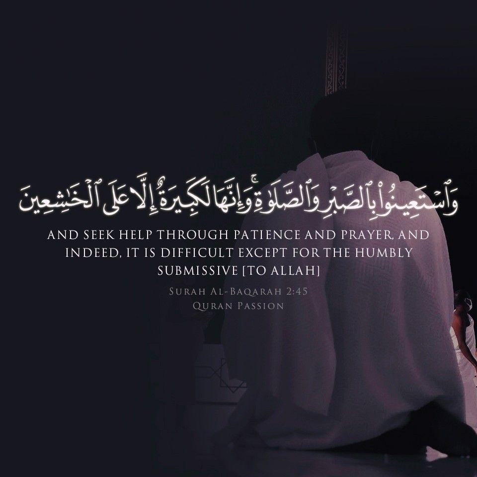 Pin On Quran Passion