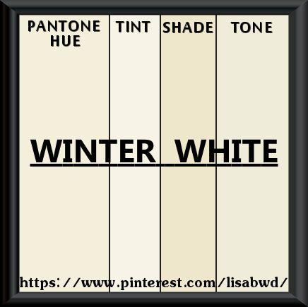 Pantone Seasonal Color Swatch Winter White