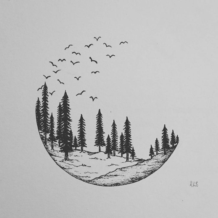Drawing Photograph Instagram Black And White Illustration Feather Font Video Photo Black And White Art Drawing Cabin Tattoo Black And White Drawing