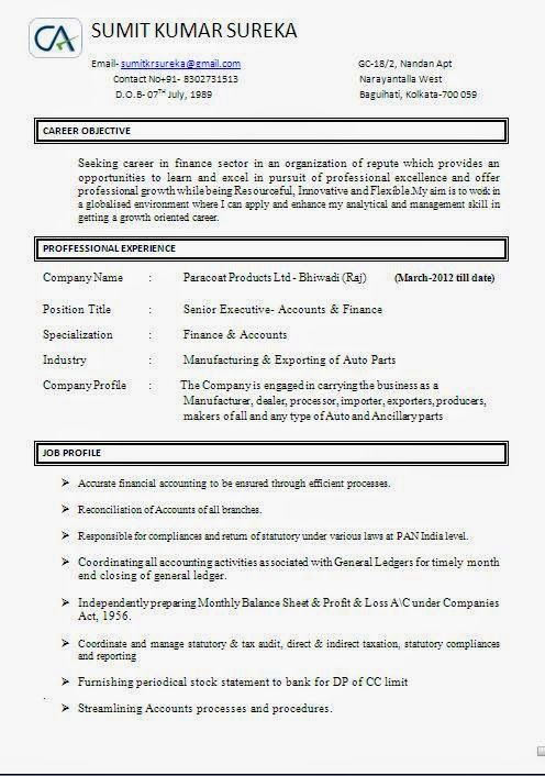 curriculum vitae europass Sample Template Example ofExcellent - format of general ledger