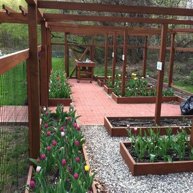 deer-proof raised bed vegetable garden with trellis ...