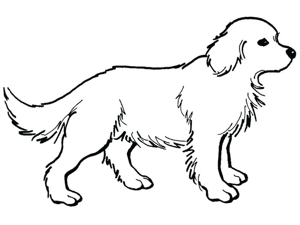 23++ Cute golden retriever coloring pages ideas in 2021