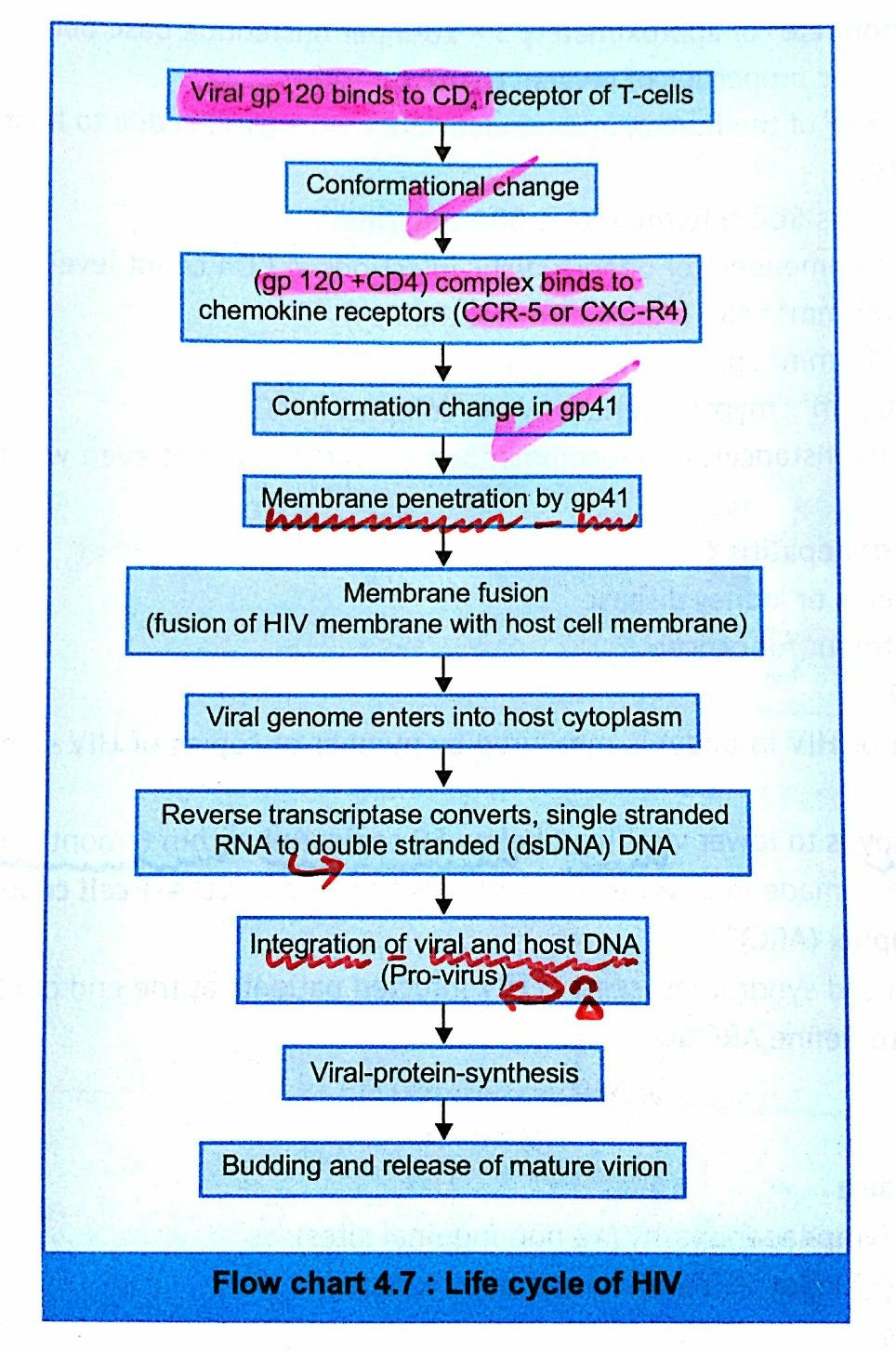 HIV mode of Infection ... #gp41 #gp120 【 Enfuvirtide ( Fusion or ...