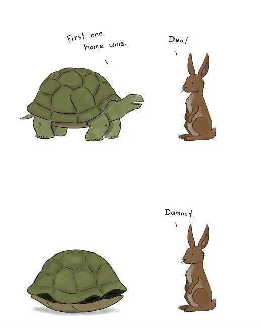 Turtle v. Rabbit reframe