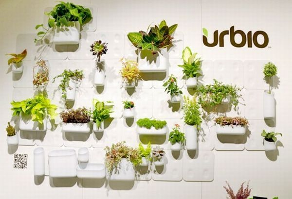 Grow plants on walls of your house with Urbio | Designbuzz : Design ideas and concepts