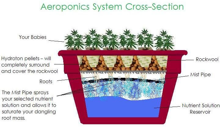 build your own aeroponic systems in your garden aeroponicsystems