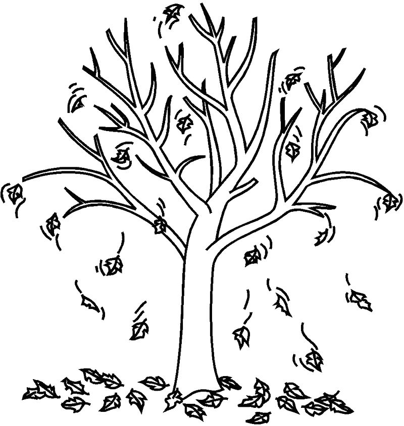 Autumn Fall Tree Coloring Page
