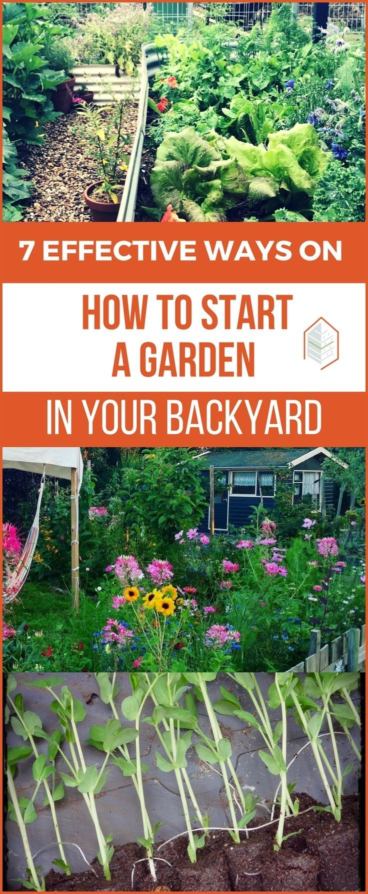 7 Steps on How to Start a Garden in Your Backyard 🌱 (With ...