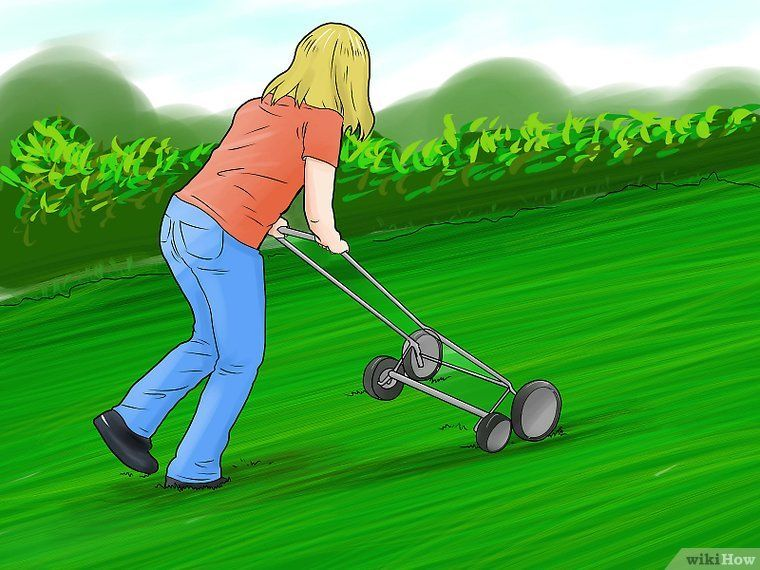 Get rid of chiggers how to get rid garden yard ideas