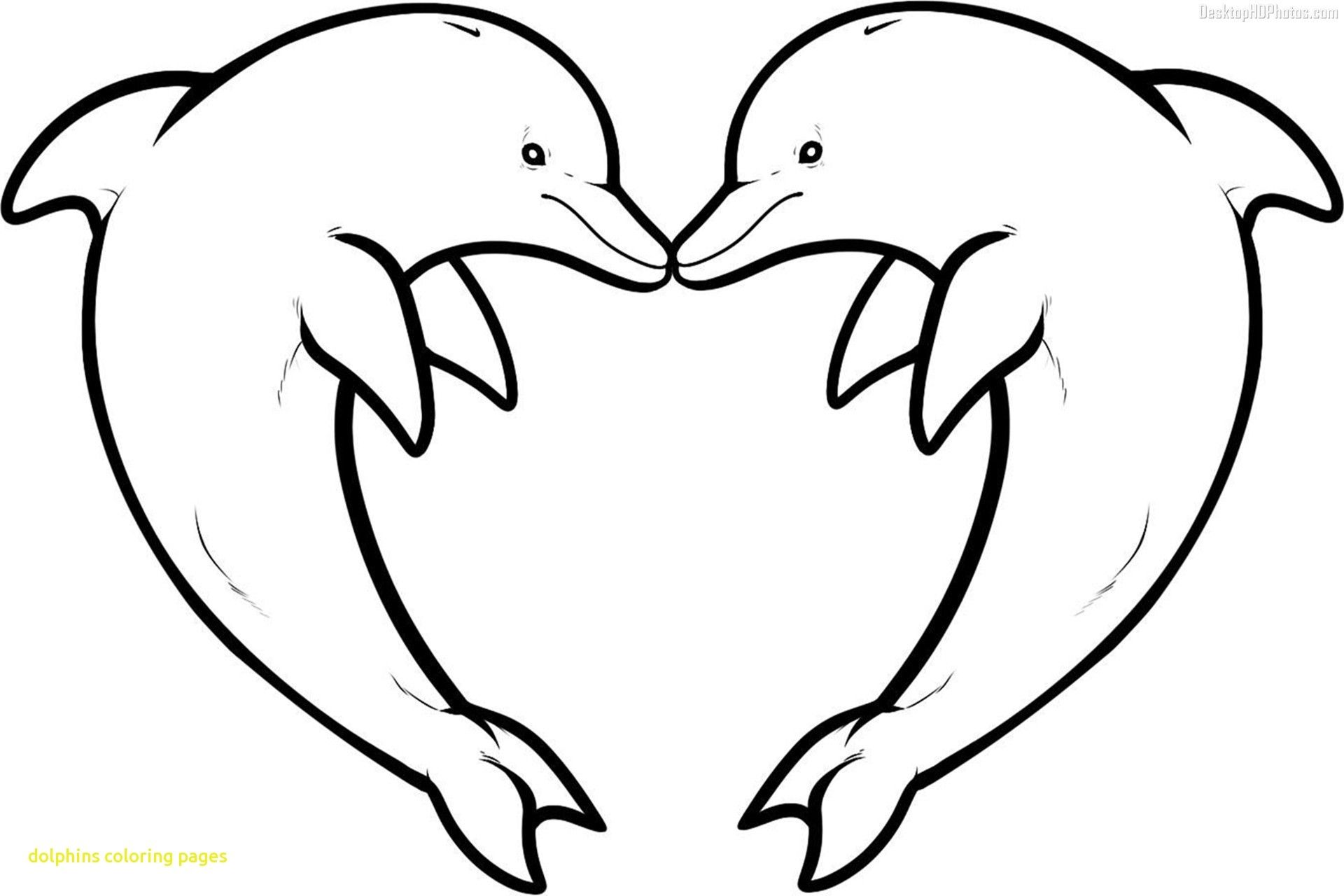 Charming Ideas Dolphin Coloring Page Realistic Baby Dolphin