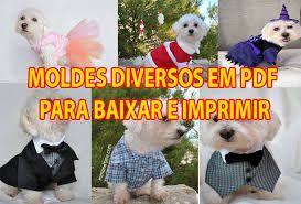 Resultado de imagem para moldes de roupas para cachorro
