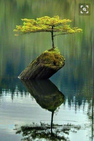 Assalamualaikum Ketika kamu merasakan kehidupan begitu berat, menepilah sejenak..berikan waktumu seluruhnya untuk Tuhanmu. Beritahu semua kesulitanmu kepada-Nya, mohon pertolongan-Nya dan rasaikan damai yang Allah berikan padamu... Mufti Menk