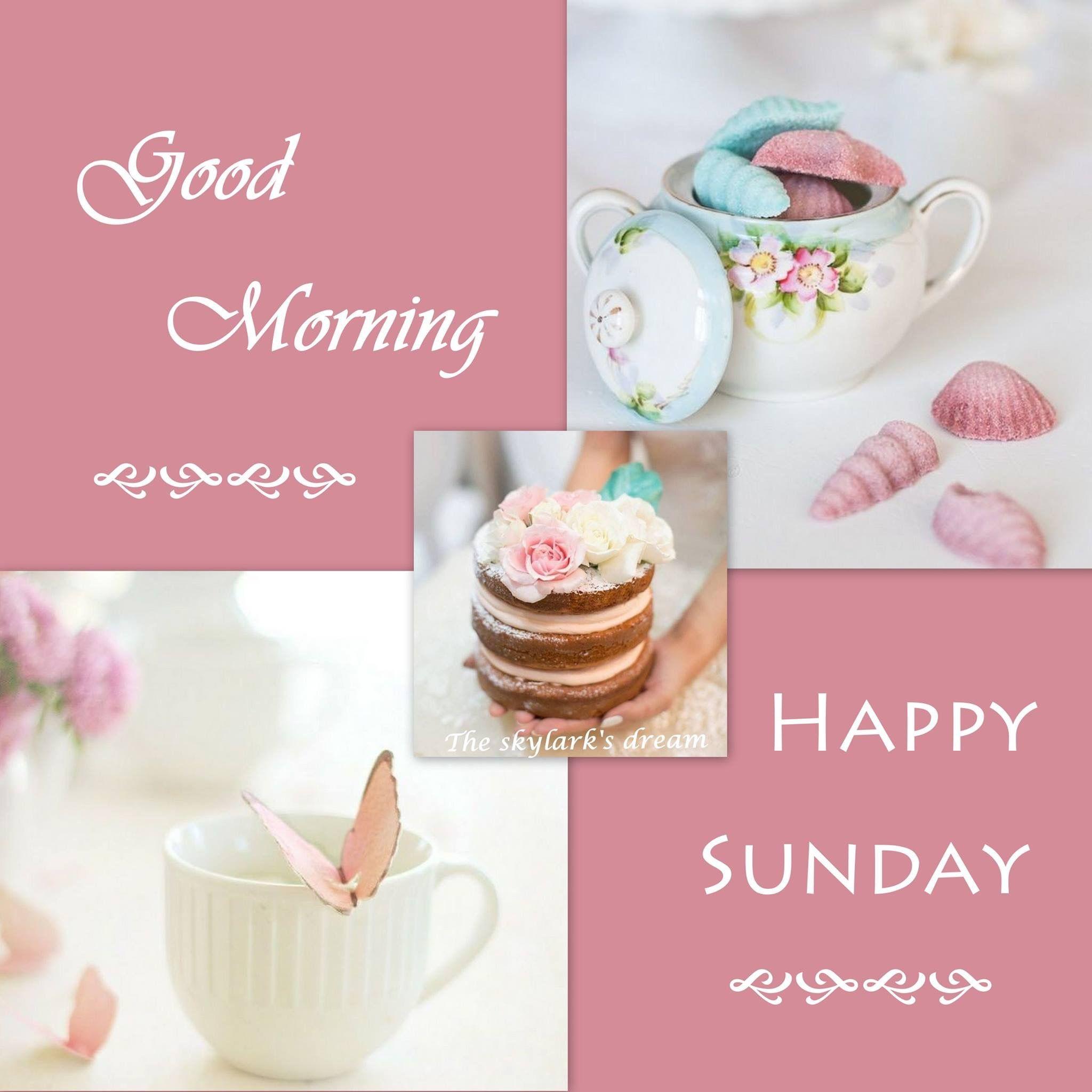Happy Sunday!   Happy sunday morning, Sunday wishes ...