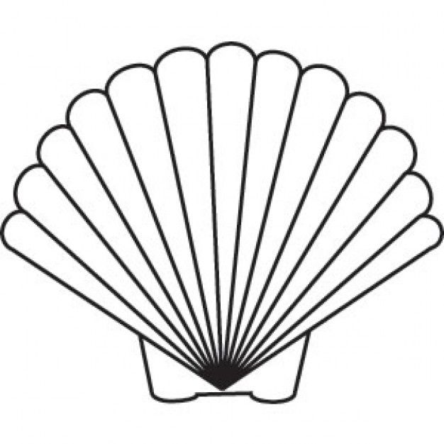 Seashell Drawing Scallop Shell Drawing Pictures Shell Tattoos