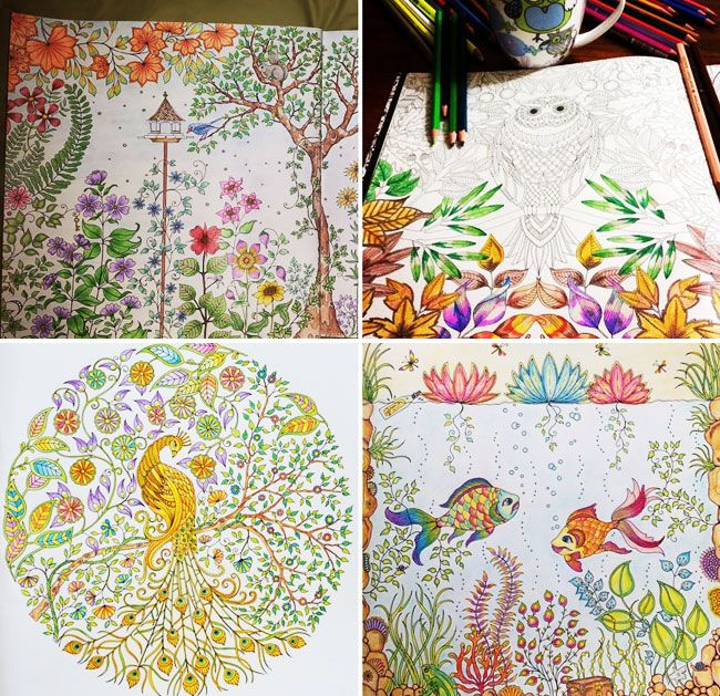 Enchanted Forest Foret Enchantee By Johanna Basford L Her First Colouring In Book For