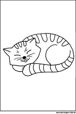 ausmalbild - katze beim schlafen | ausmalbilder katzen